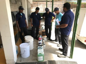 Chemical Knowledge Training