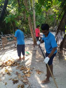Isalnd Cleaning 2